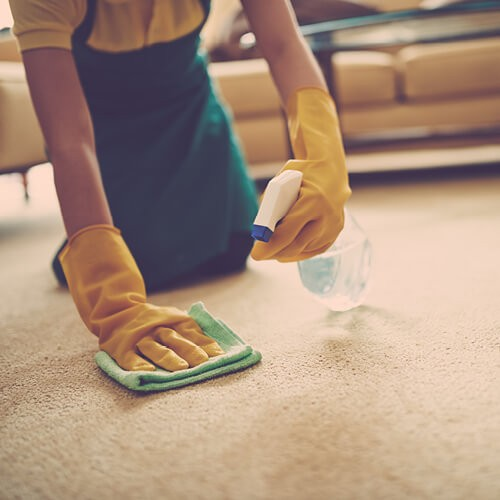 Cleaning carpet stains | Cherry City Interiors